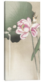 Canvastavla  Lotus Flower and Finch - Ohara Koson