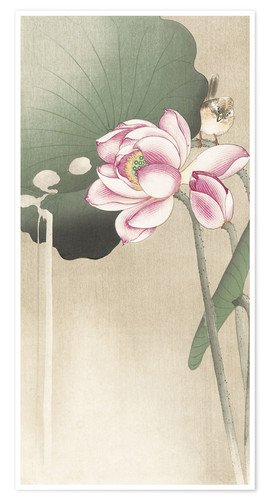 Premiumposter Lotus Flower and Finch