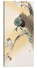 Canvastavla  A peacock in a cherry tree crown - Ohara Koson