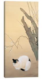 Canvastavla  Cat and plum blossoms - Hishida Shunso