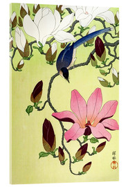 Akrylglastavla  Magpie with Pink and White Magnolia Blossoms - Ohara Koson