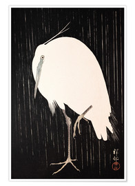Premiumposter  White heron standing in the rain - Ohara Koson