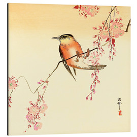 Aluminiumtavla  Red Bird and Cherry Blossoms - Ohara Koson