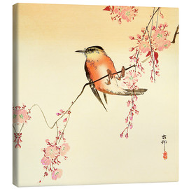Canvastavla  Red Bird and Cherry Blossoms - Ohara Koson