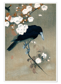 Premiumposter  Crow and Cherry Blossoms - Ohara Koson