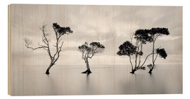 Trätavla  Tree silhouettes winding over a lake - Steven Fudge