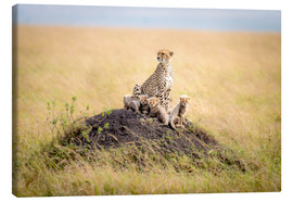 Canvastavla  Leopard mother - Ted Taylor