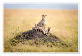 Premiumposter  Leopard mother - Ted Taylor