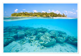 Premiumposter  Reef and tropical island, Maldives - Matteo Colombo