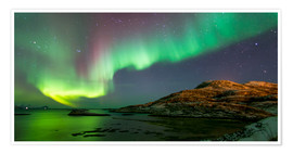 Poster  Northern Lights near Tromso, Norway - Louise Murray