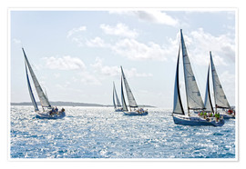 Premiumposter Sailboat regattas
