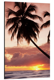 Aluminiumtavla  Tropical sunset in Barbados, Caribbean - Angelo Cavalli