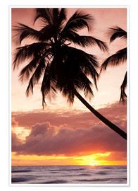 Poster  Tropical sunset in Barbados, Caribbean - Angelo Cavalli