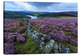 Canvastavla  Heather covered Bamford Moor and dry stone wall - Eleanor Scriven