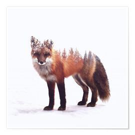 Poster  Fox - Peg Essert