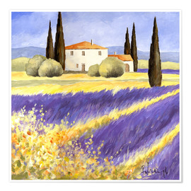 Premiumposter  Light of Provence - Franz Heigl