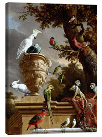 Canvastavla  The Menagerie - Melchior de Hondecoeter