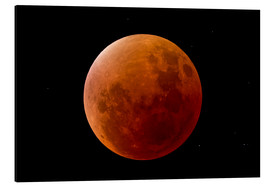 Aluminiumtavla  Blood Moon September 2015 - MonarchC