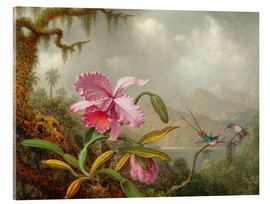Akrylglastavla  Cattleya Orchid and Three Hummingbirds - Martin Johnson Heade