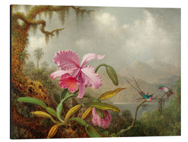 Aluminiumtavla  Cattleya Orchid and Three Hummingbirds - Martin Johnson Heade