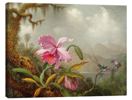 Canvastavla  Cattleya Orchid and Three Hummingbirds - Martin Johnson Heade