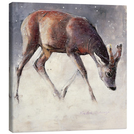 Canvastavla  Jung deer in winter - Mark Adlington