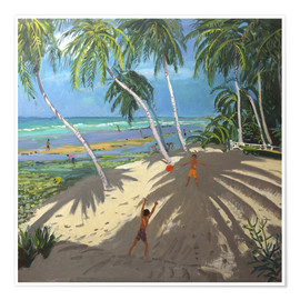 Premiumposter  Palm trees, Clovelly beach, Barbados - Andrew Macara