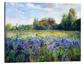 Aluminiumtavla  Field of flowers in the sunset - Timothy Easton