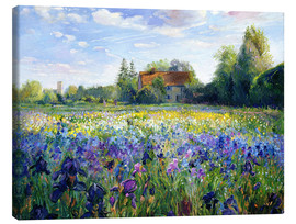 Canvastavla  Field of flowers in the sunset - Timothy Easton