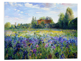 PVC-tavla  Field of flowers in the sunset - Timothy Easton