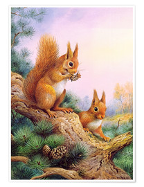 Premiumposter  Pair of Red Squirrels on a Scottish Pine - Carl Donner