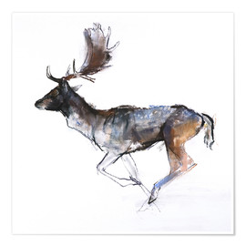 Poster  Galloping Buck - Mark Adlington