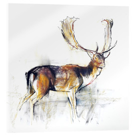 Akrylglastavla  Study of a Stag - Mark Adlington