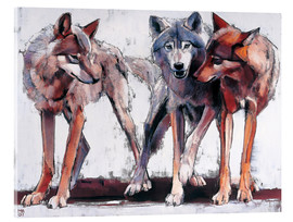 Akrylglastavla  Pack of wolves - Mark Adlington
