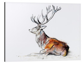Aluminiumtavla  Lying Stag - Mark Adlington