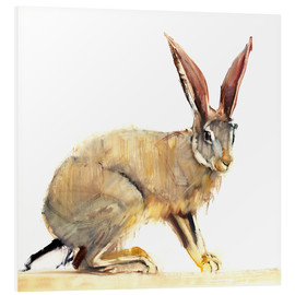PVC-tavla  Hare - Mark Adlington