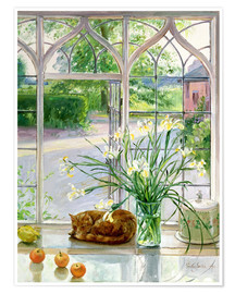 Premiumposter  Sleeping cat in the window - Timothy Easton