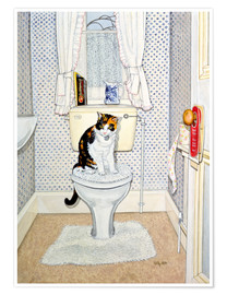 Poster  Cat on the Loo - Ditz