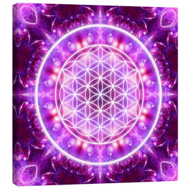Canvastavla  Flower of Life - Transformation - Dolphins DreamDesign