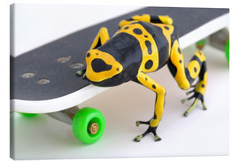 Canvastavla  Frog On A Skateboard - Corey Hochachka