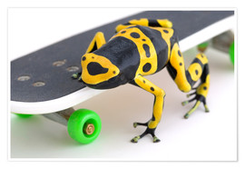 Poster Frog On A Skateboard