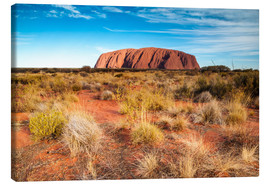 Canvastavla  Ayers Rock in the evening - Matteo Colombo