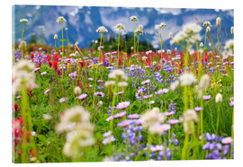 Akrylglastavla  Wildflower meadow - Craig Tuttle