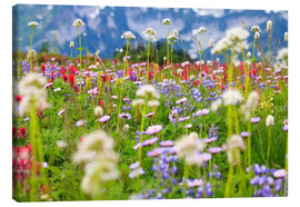 Canvastavla  Wildflower meadow - Craig Tuttle