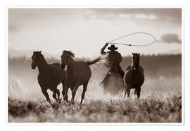 Poster  Cowboy of the horses catches - Richard Wear