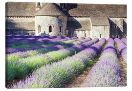 Canvastavla  Famous Senanque abbey with its lavender field, Provence, France - Matteo Colombo