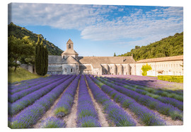 Canvastavla  Famous Senanque abbey with lavender field, Provence, France - Matteo Colombo