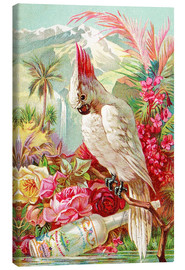 Canvastavla  Cocktail Cockatoo - Advertising Collection
