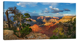 Canvastavla  Grand Canyon with knotty pine - Michael Rucker