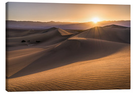Canvastavla  Sunset at the Dunes in Death Valley - Andreas Wonisch